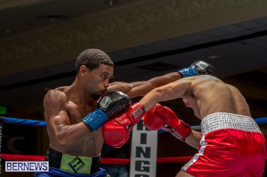 Bermuda-Boxing-JM-Nov-2015-134
