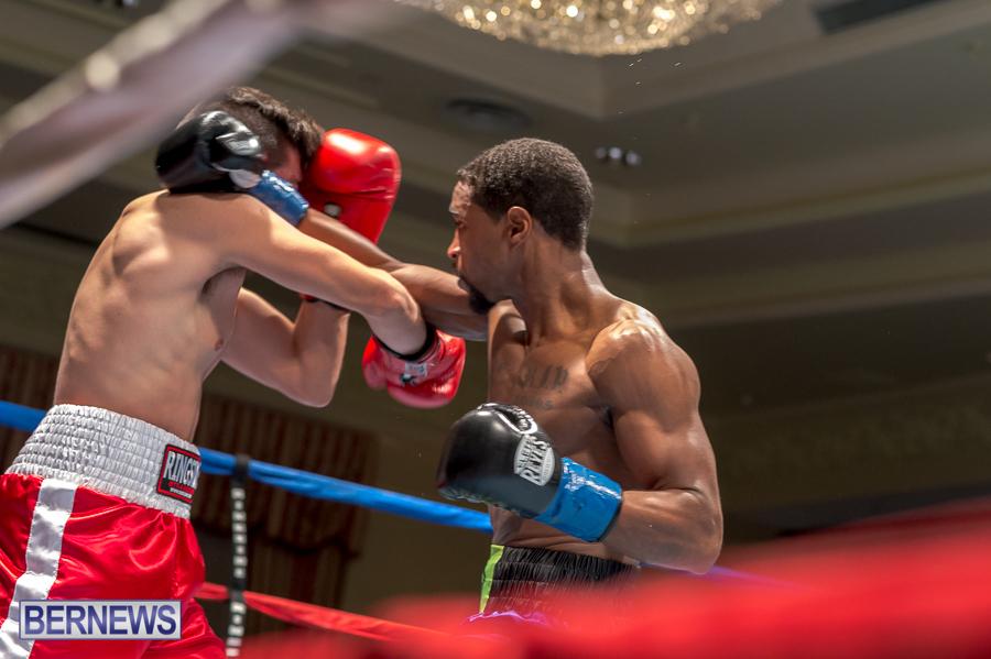 Bermuda-Boxing-JM-Nov-2015-135