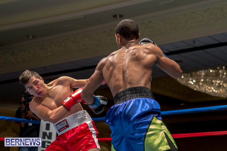Bermuda-Boxing-JM-Nov-2015-137