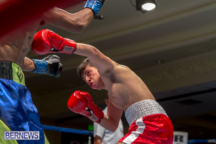 Bermuda-Boxing-JM-Nov-2015-138