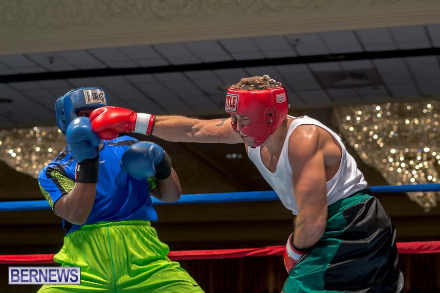 Bermuda-Boxing-JM-Nov-2015-14