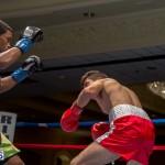 Bermuda Boxing JM Nov 2015 (140)