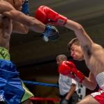 Bermuda Boxing JM Nov 2015 (141)