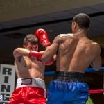 Bermuda Boxing JM Nov 2015 (144)