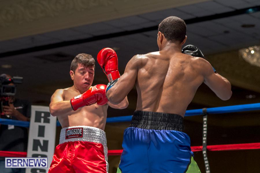Bermuda-Boxing-JM-Nov-2015-145
