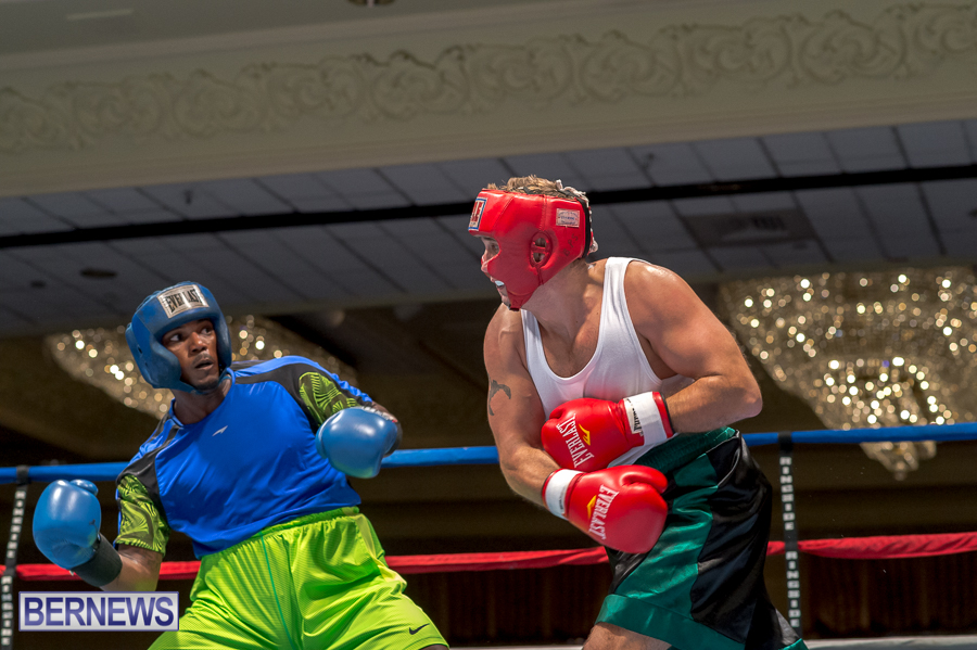 Bermuda-Boxing-JM-Nov-2015-15