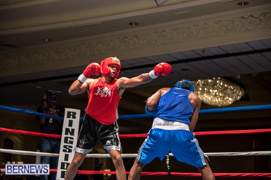Bermuda-Boxing-JM-Nov-2015-150