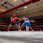 Bermuda Boxing JM Nov 2015 (151)