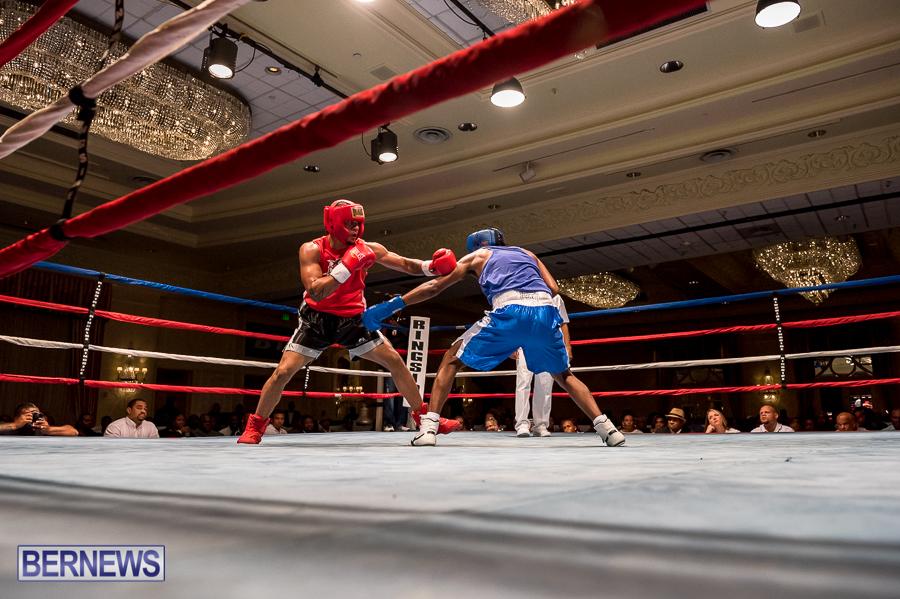 Bermuda-Boxing-JM-Nov-2015-151