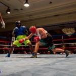 Bermuda Boxing JM Nov 2015 (156)