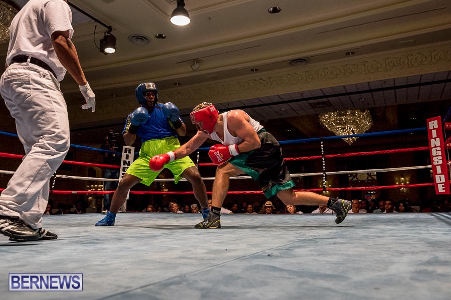 Bermuda-Boxing-JM-Nov-2015-156
