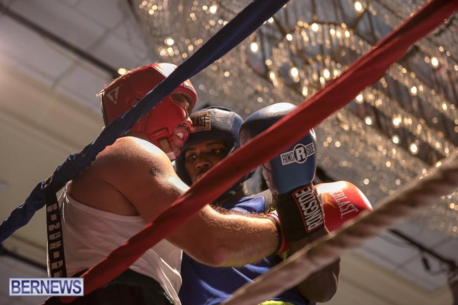 Bermuda-Boxing-JM-Nov-2015-157