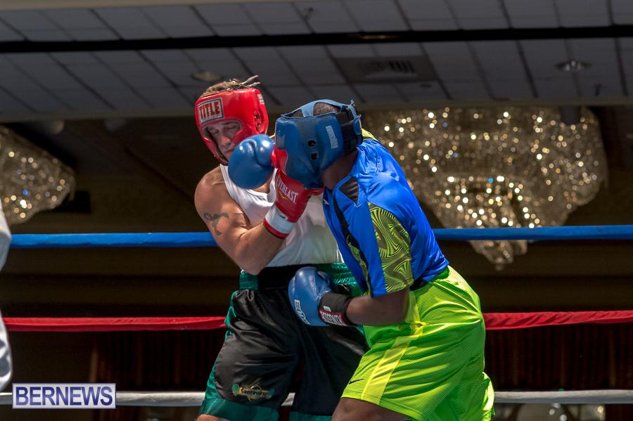 Bermuda-Boxing-JM-Nov-2015-16