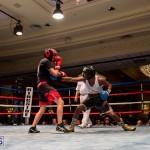 Bermuda Boxing JM Nov 2015 (166)