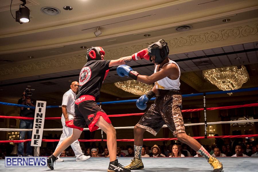 Bermuda-Boxing-JM-Nov-2015-167