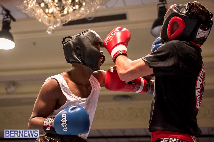 Bermuda-Boxing-JM-Nov-2015-171