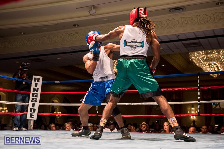 Bermuda-Boxing-JM-Nov-2015-174