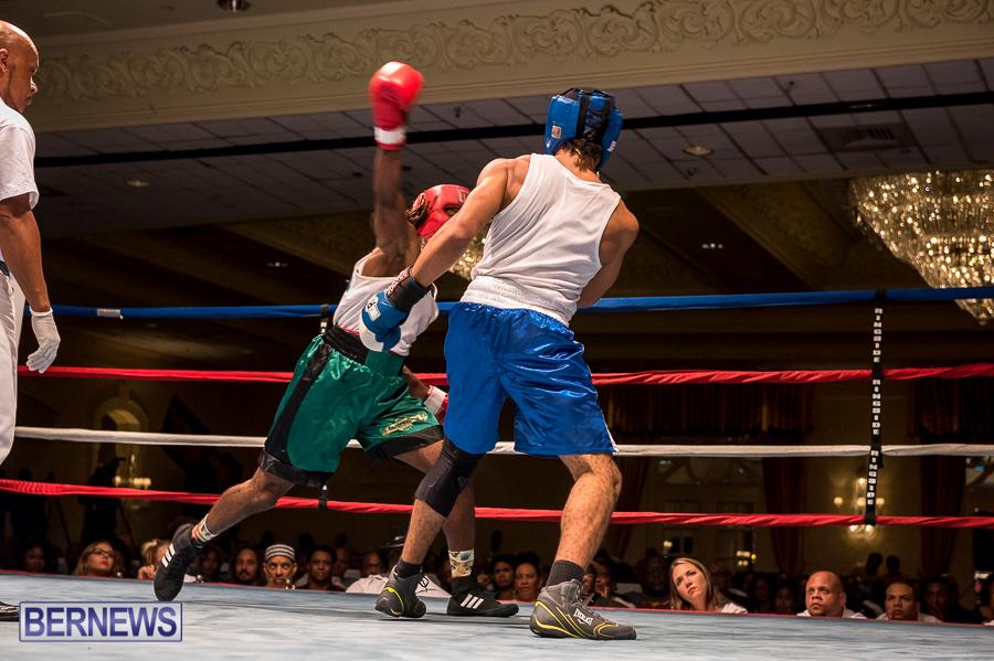 Bermuda-Boxing-JM-Nov-2015-175