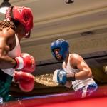 Bermuda Boxing JM Nov 2015 (176)
