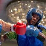 Bermuda Boxing JM Nov 2015 (18)