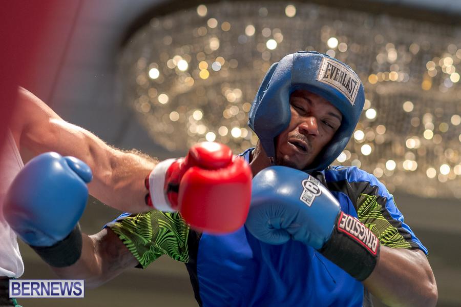 Bermuda-Boxing-JM-Nov-2015-18