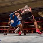 Bermuda Boxing JM Nov 2015 (180)