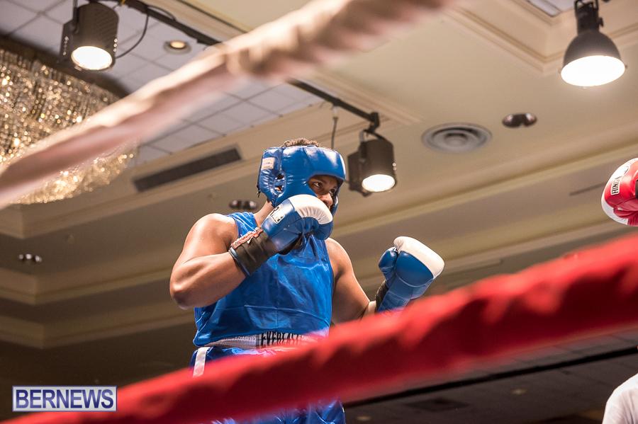 Bermuda-Boxing-JM-Nov-2015-181