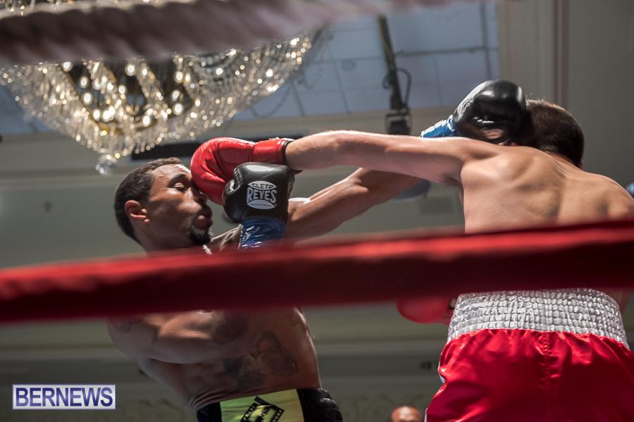 Bermuda-Boxing-JM-Nov-2015-188
