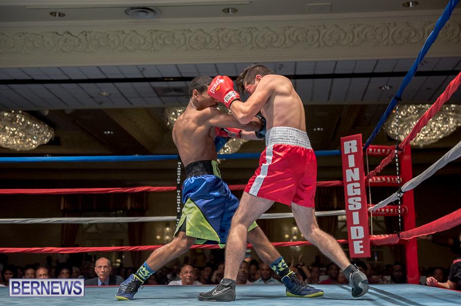 Bermuda-Boxing-JM-Nov-2015-190