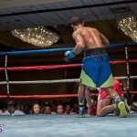 Bermuda Boxing JM Nov 2015 (195)