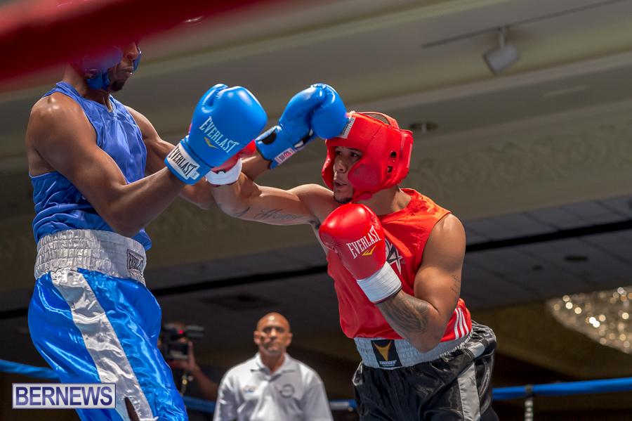 Bermuda-Boxing-JM-Nov-2015-2
