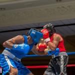 Bermuda Boxing JM Nov 2015 (20)