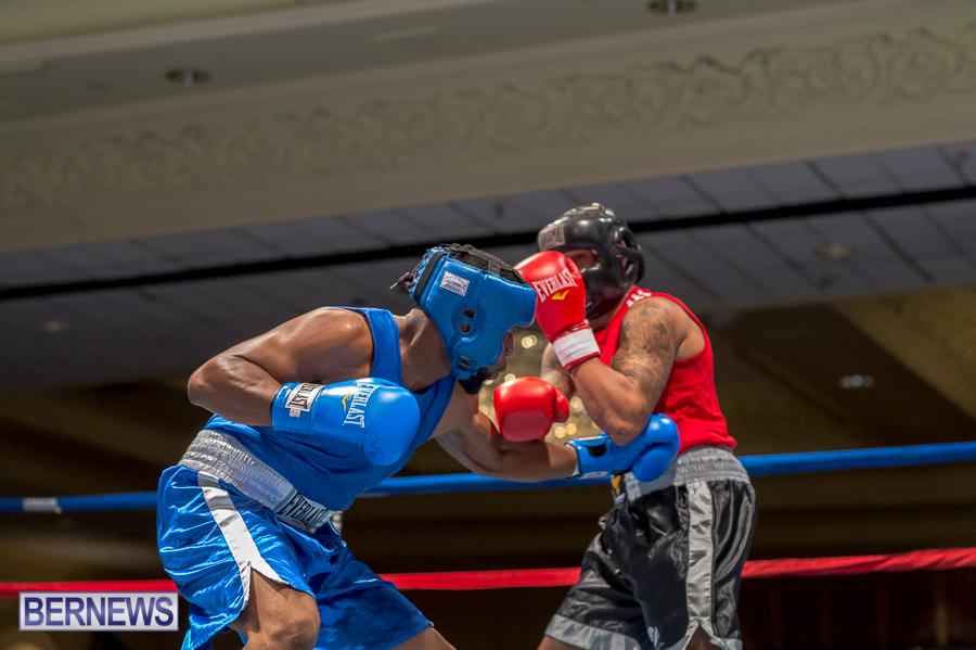 Bermuda-Boxing-JM-Nov-2015-20