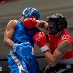 Bermuda Boxing JM Nov 2015 (21)