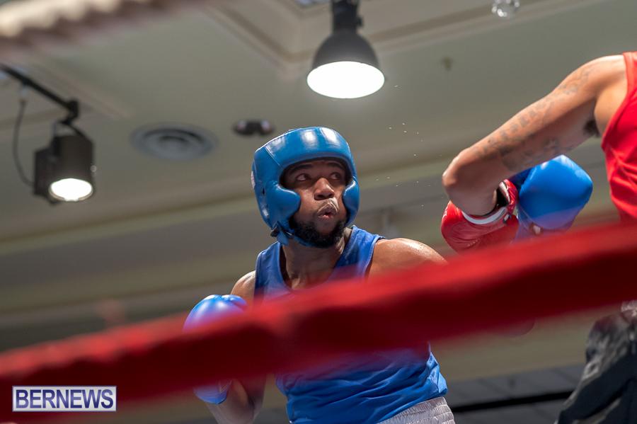 Bermuda-Boxing-JM-Nov-2015-23