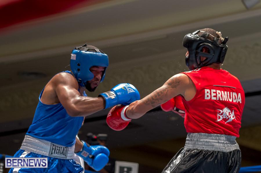 Bermuda-Boxing-JM-Nov-2015-24