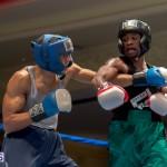 Bermuda Boxing JM Nov 2015 (26)