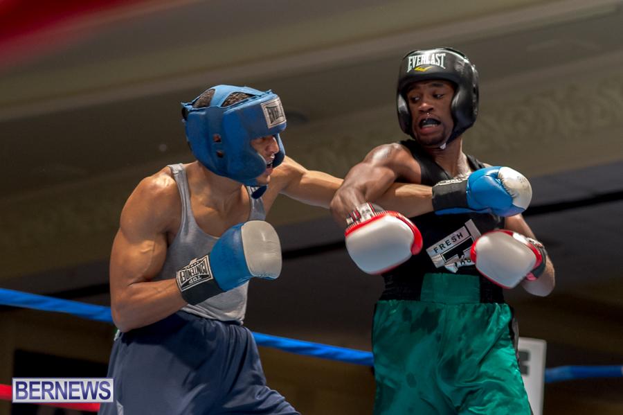 Bermuda-Boxing-JM-Nov-2015-26