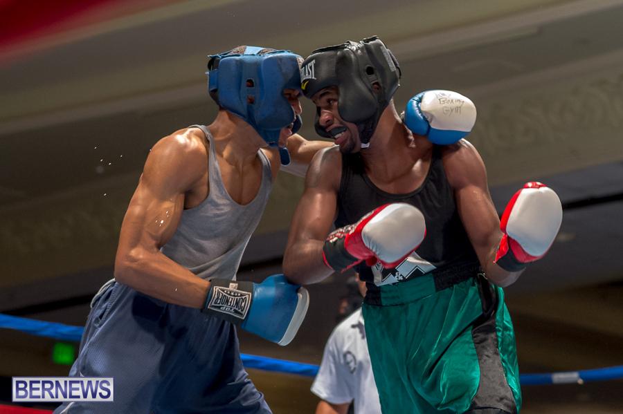 Bermuda-Boxing-JM-Nov-2015-27