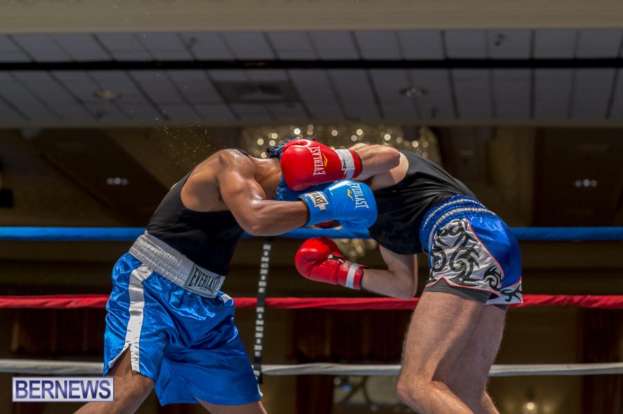 Bermuda-Boxing-JM-Nov-2015-31