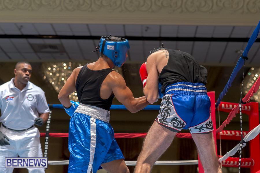 Bermuda-Boxing-JM-Nov-2015-32
