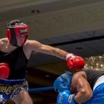 Bermuda Boxing JM Nov 2015 (35)