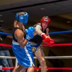 Bermuda Boxing JM Nov 2015 (36)
