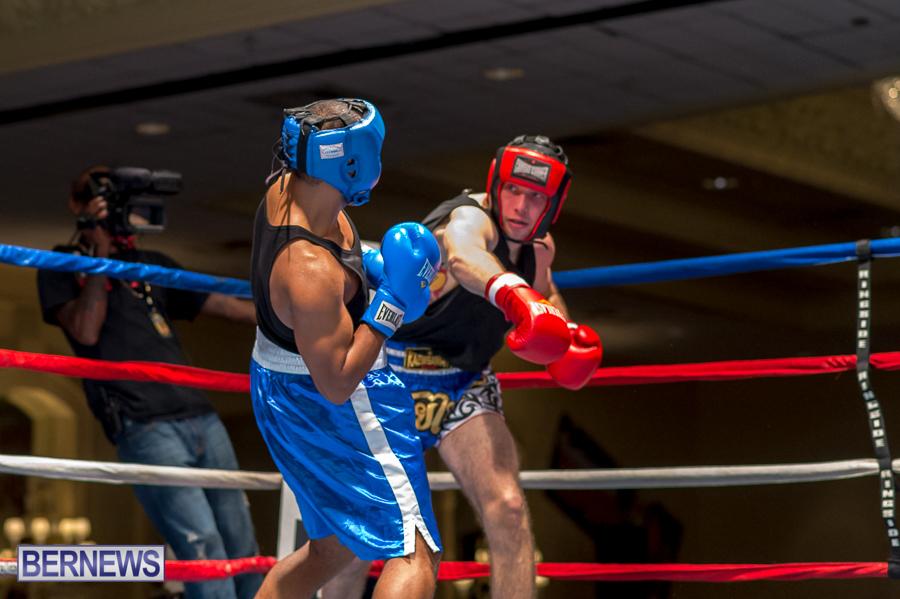 Bermuda-Boxing-JM-Nov-2015-36