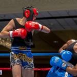 Bermuda Boxing JM Nov 2015 (37)