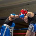 Bermuda Boxing JM Nov 2015 (38)