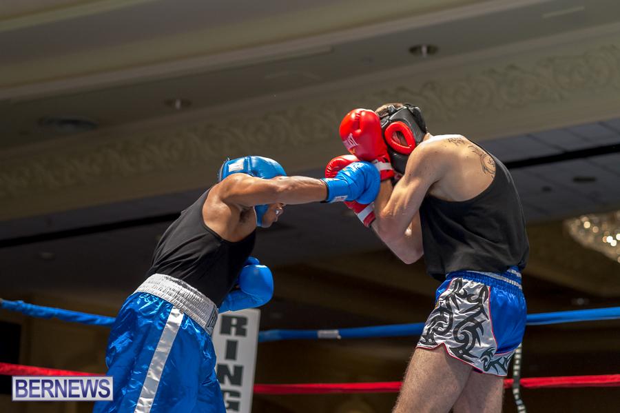 Bermuda-Boxing-JM-Nov-2015-38
