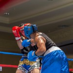 Bermuda Boxing JM Nov 2015 (39)