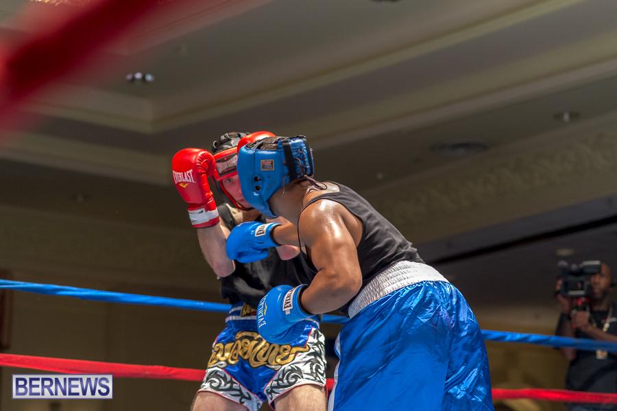 Bermuda-Boxing-JM-Nov-2015-39