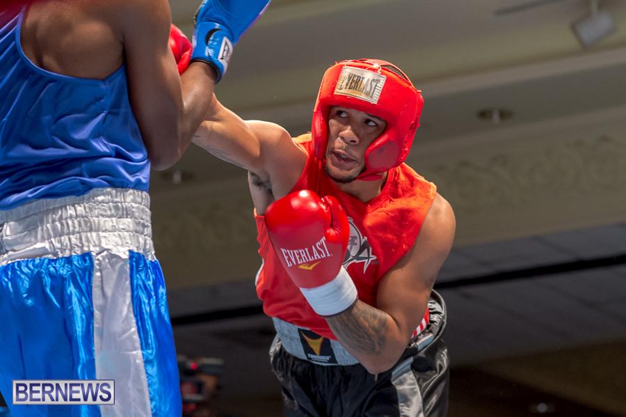Bermuda-Boxing-JM-Nov-2015-4